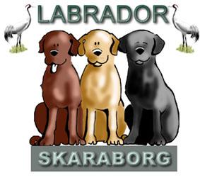 Labrador Skaraborg Logga